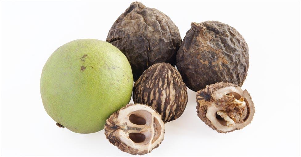 Mirah Belle Black Walnut for Hair